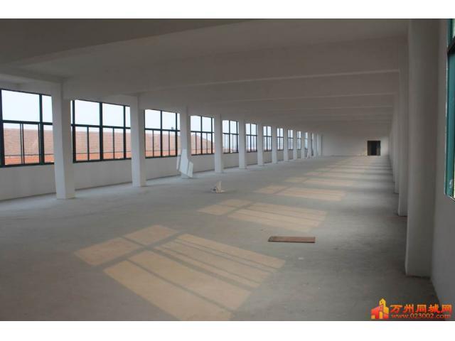 现有申明坝一标准厂房出租,交通便利,价格实惠。